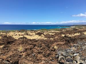 Shore of the Big Island, Hawaii. Photo credit: Jeff Peischl