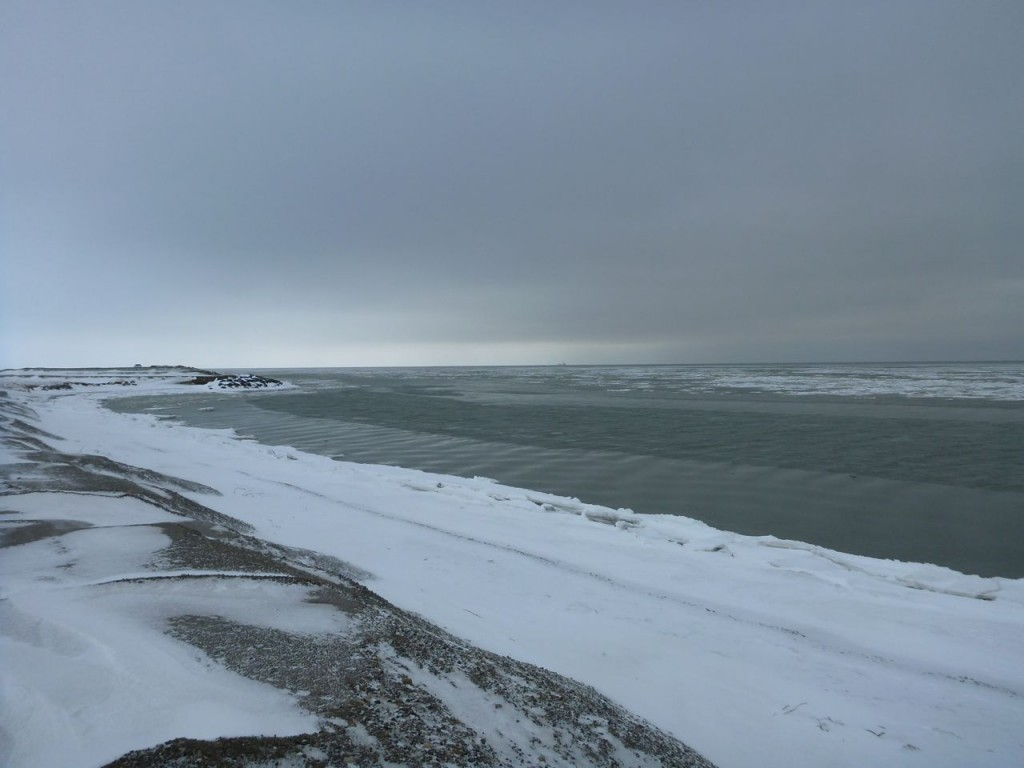 The near shore ice environment we are looking to sample.