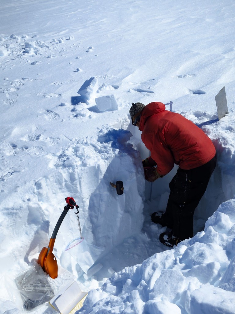 Max measuring snow pit densities at the EastGrIP site. Photo take by Mike MacFerrin, 2015