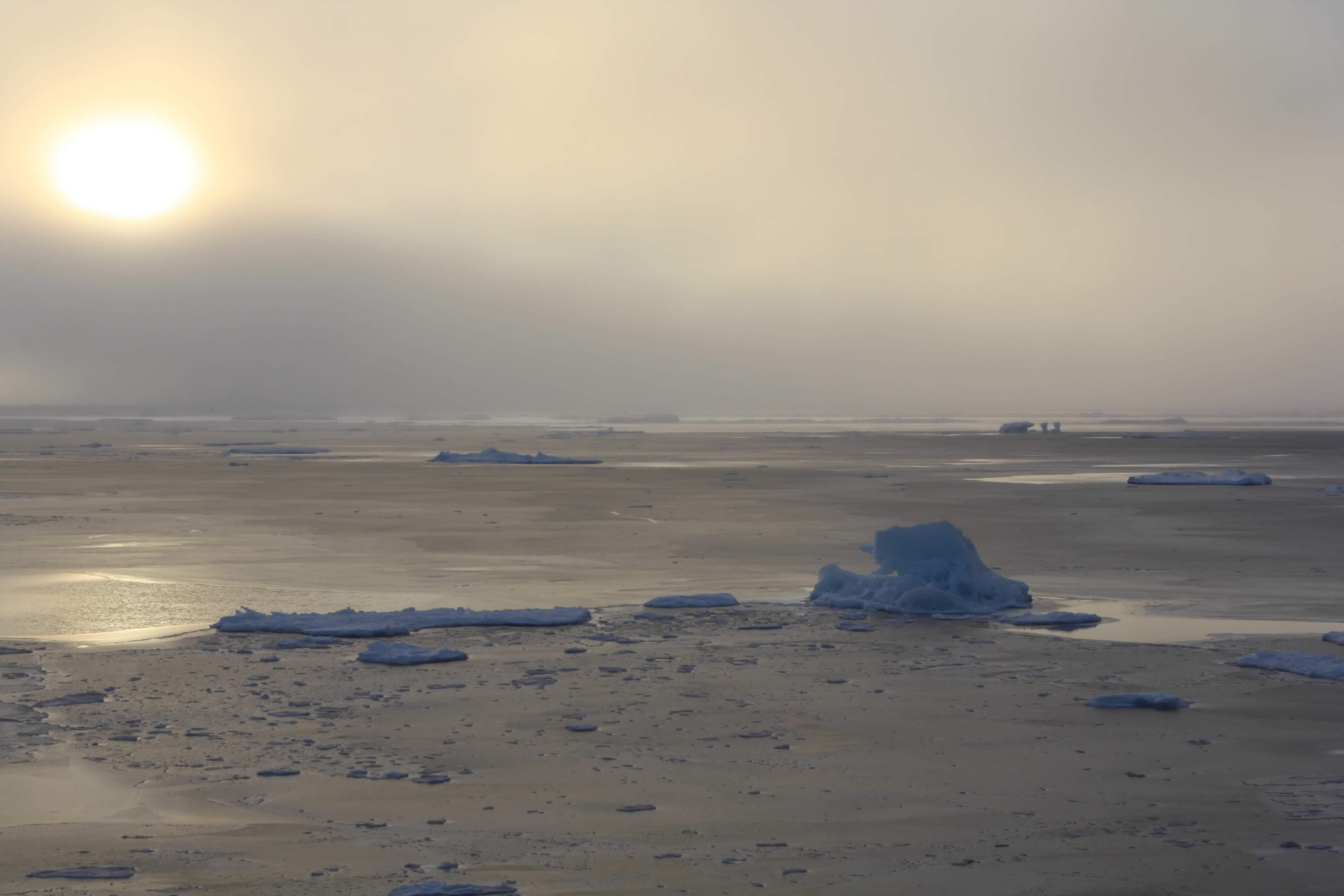 sun fog and sculpted ice