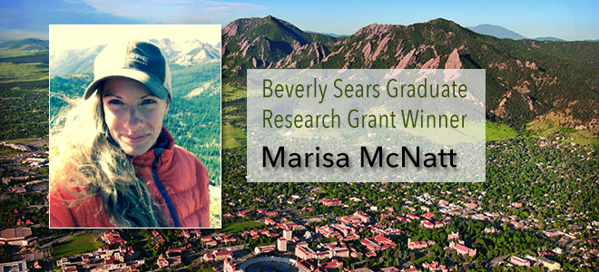 Doctoral research grants